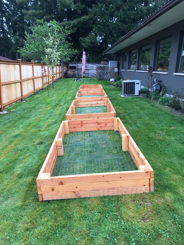 garden bed frames at Green City Dental